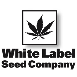 White Label Hemp Seeds Logo